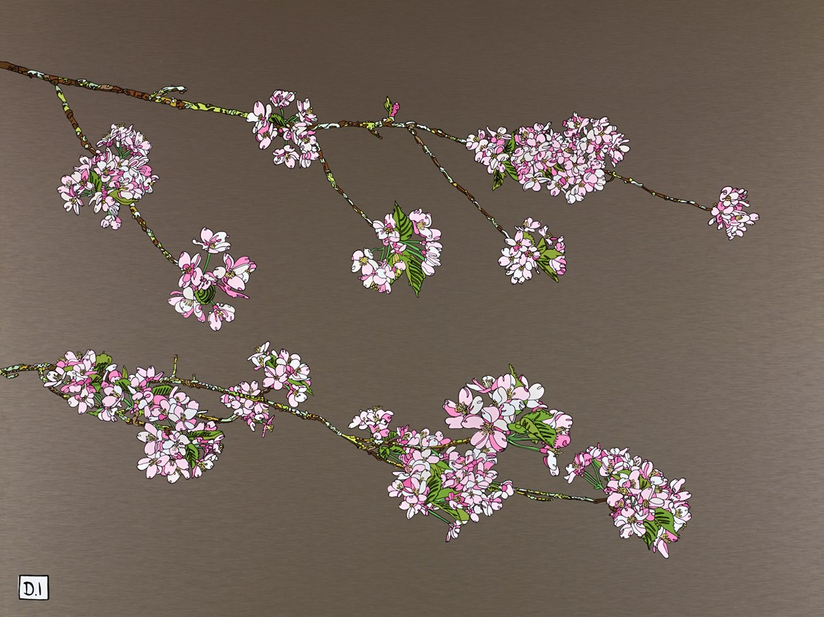 Pink Cherry Blossom II